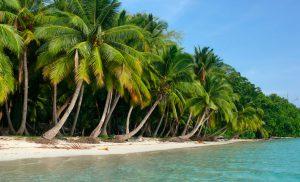 havelock-beach-holiday