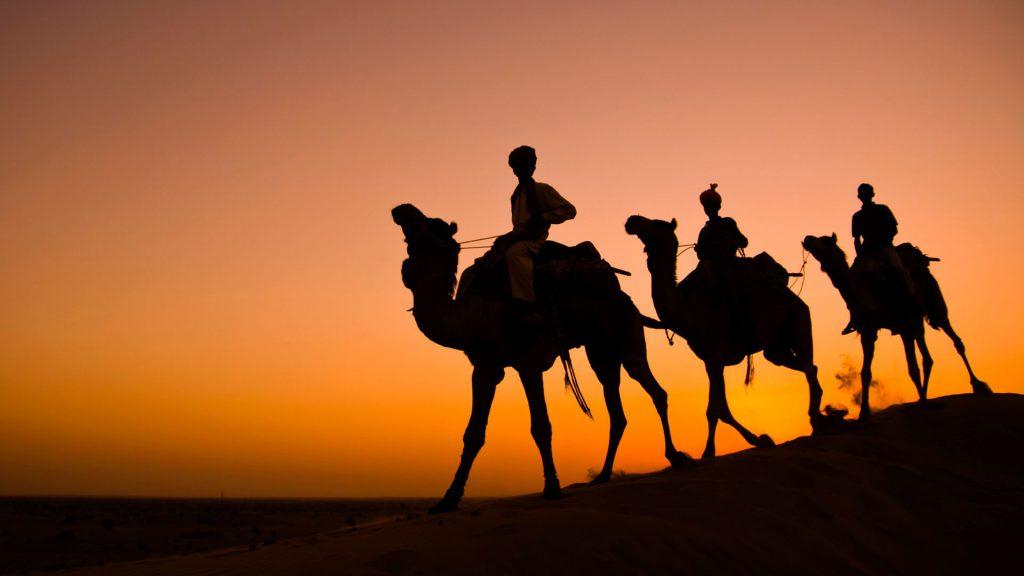Reasons why you should visit Rajasthan