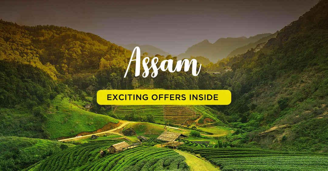 assam_tour